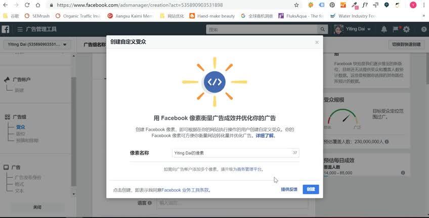 【20】Facebook广告受众分析