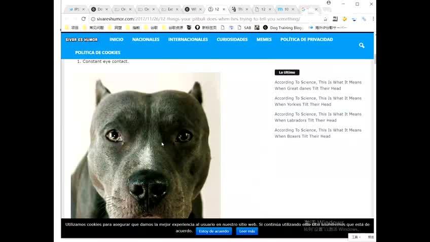 【案例分析】博客-文章类优秀网站案例分析 – 博客站群案例
