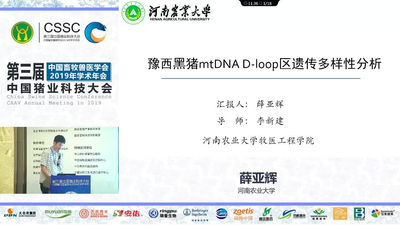 豫西黑猪mtDNA D-loop序列遗传多样性分析