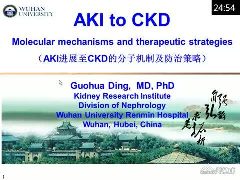 AKI进展至CKD的分子机制及防治策略