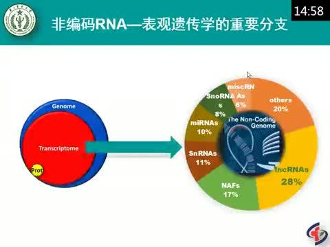 精准医学的方向之一表观遗传学研究