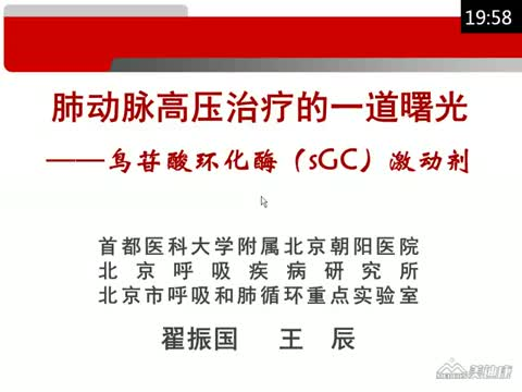 曙光初现: sGC激动剂之于肺动脉高压