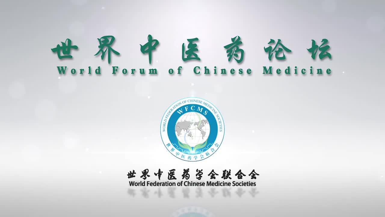 08杨利平--中国中医药现代化国际化思路与探索