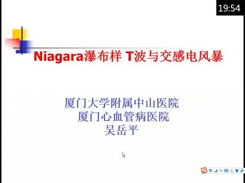 Niagara瀑布样T波与交感电风暴