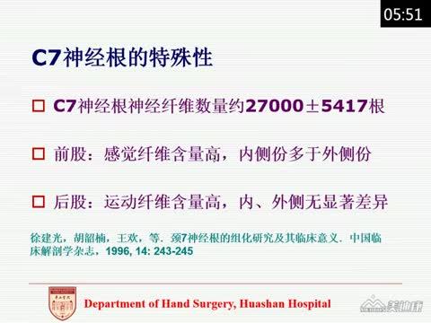 健侧颈7移位术的临床和基础研究