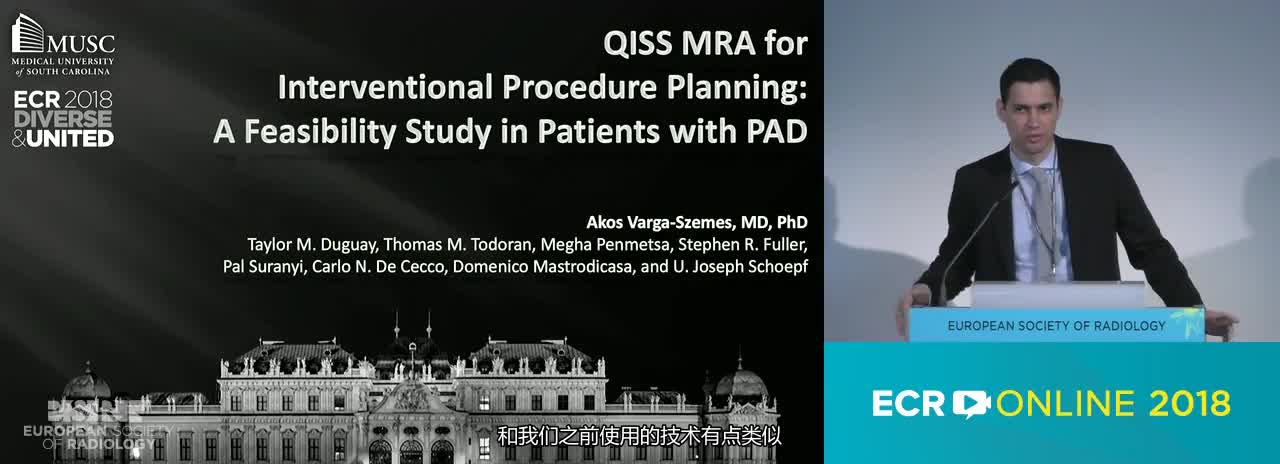 Quiescent-interval single-shot (QISS) MRA for interventional procedure planning: a feasibility study in patients with peripheral artery disease