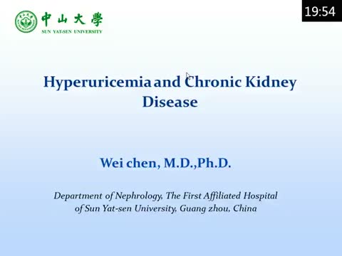 Hyperuricemia and chronic kidney diseases