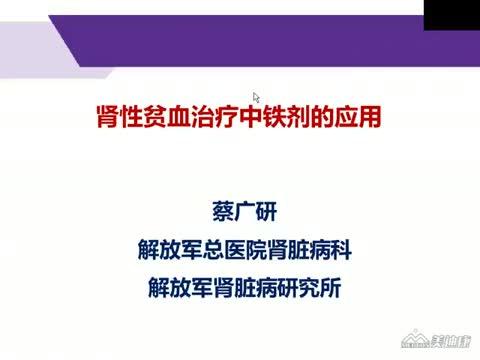 肾性贫血治疗中的铁剂应用