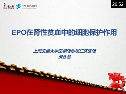 EPO在肾性贫血中的细胞保护作用